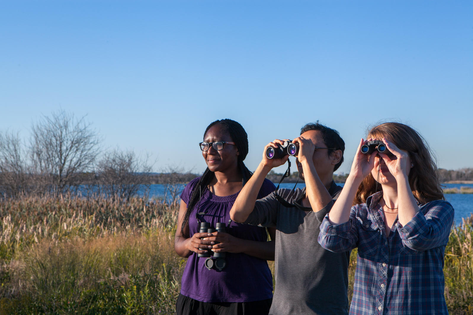 Michigan, Birding, Birders