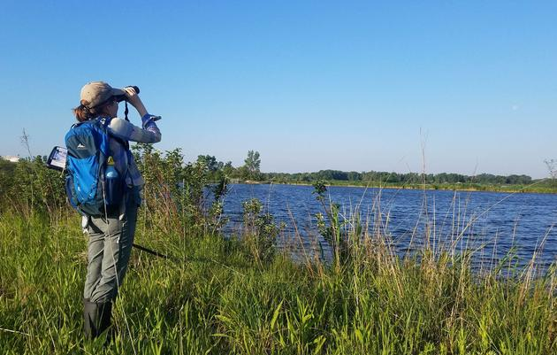 Illinois Marsh Bird Survey Volunteers