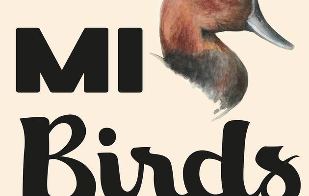 MI Birds
