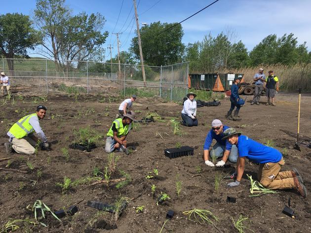 Indian Ridge Marsh Community Stewardship Days