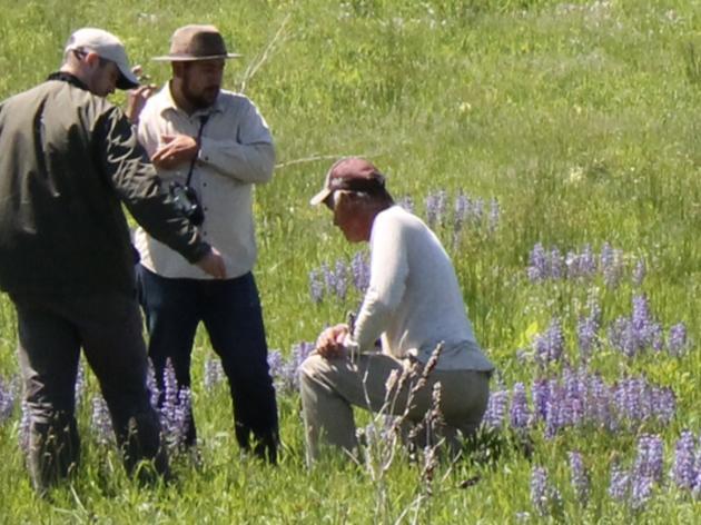 Grassland Landscape Conservation Design in the Chicago Region